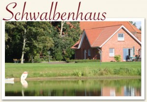 schwalbenhaus-300x208