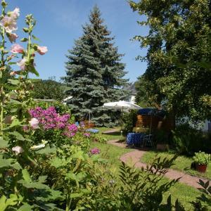 Schöne-Gartenanlage